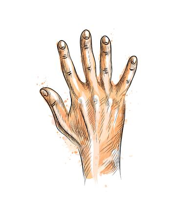 Hand showing five fingers from a splash of watercolor, hand drawn sketch. Vector illustration of paints