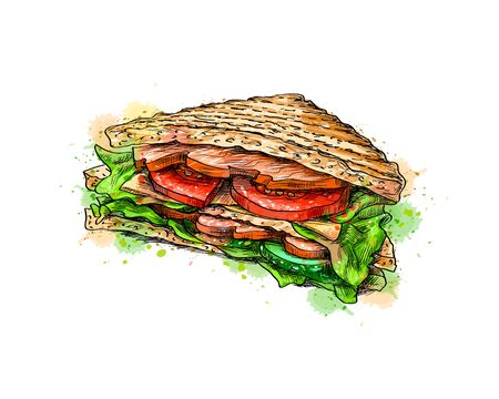 Sandwich fast food from a splash of watercolor, hand drawn sketch. Vector illustration of paints