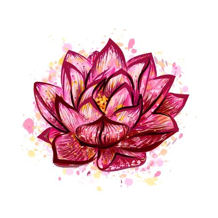 Lotus flower isolated on white, hand drawn sketch. Vector illustration Foto de archivo - 130826340