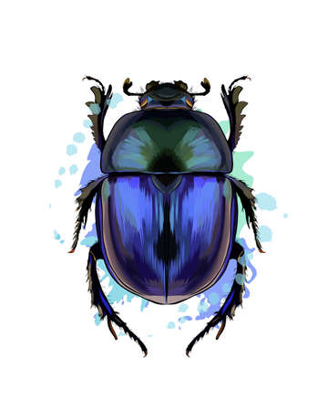Scarab beetle from a splash of watercolor, colored drawing, realistic Ilustração