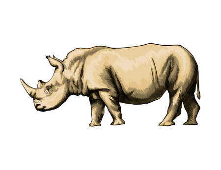 Rhinoceros from a splash of watercolor, colored drawing, realistic Ilustração