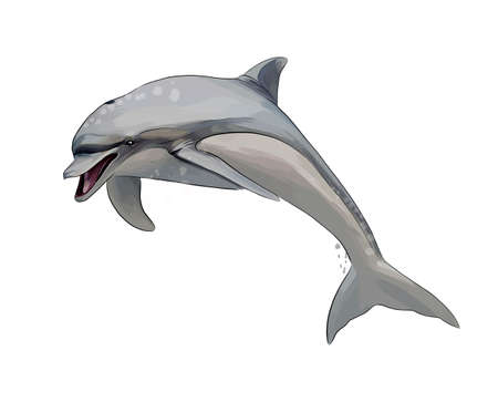 Dolphin from a splash of watercolor, colored drawing, realistic Ilustração