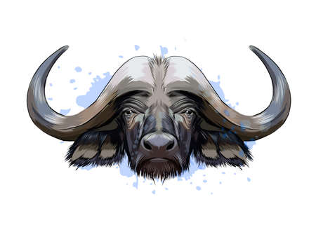 Bison, buffalo head portrait from a splash of watercolor, colored drawing, realistic