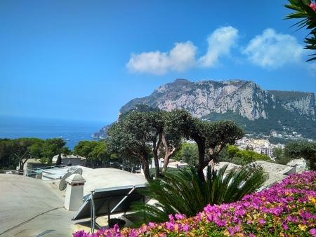 Italian Capri