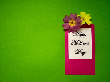 for Mothers Day holiday the inscription on paper and color flowers