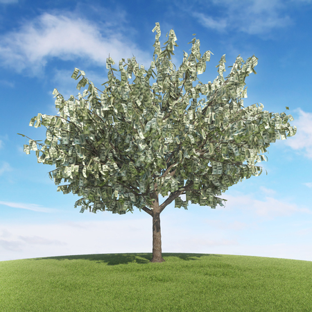 Tree with money leaves - Summer