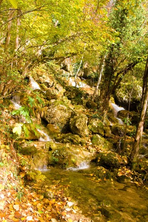 Autumn in the park Stock Photo - 4260820