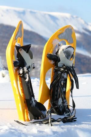 snowshoes: Snowshoes