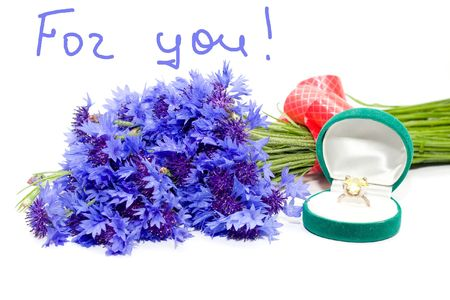 humiliated: Blue flowers on the white background Stock Photo