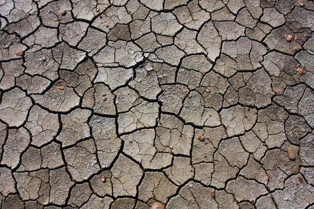 drought Stock Photo - 4888387