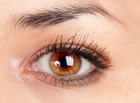 beautiful make up eyeshadow photo