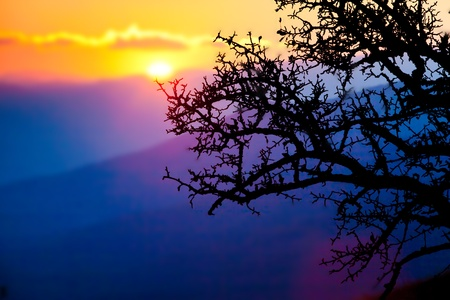 Scenic Crimea mountains at the sunset Stock Photo - 9858936