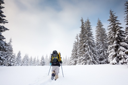 snowshoe: Hiker in winter in mountains Stock Photo
