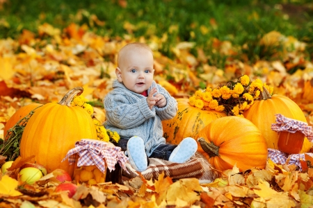 Cute baby boy with pumpkins in autumn garden photo