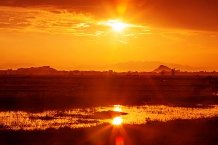Sunset landscape at fields of Sri Lanka photo