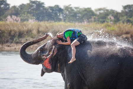 mahout: Woman plays with elephant in river