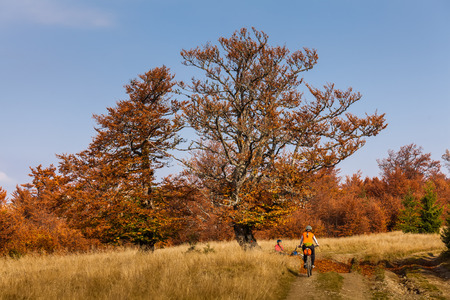 mountain biker: Mountain biker in autumn forest