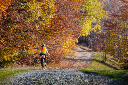 country roads: Mountain biker in autumn forest