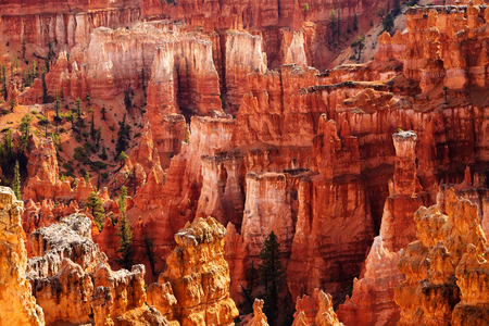rock formation: Landscape of Bryce canyon National Park, Utah, USA Stock Photo
