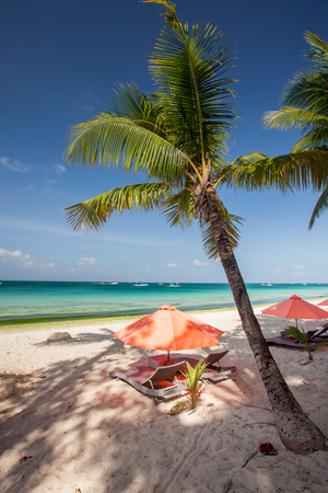 Chaise longues at the beach on the Boracay island, Philippines 写真素材