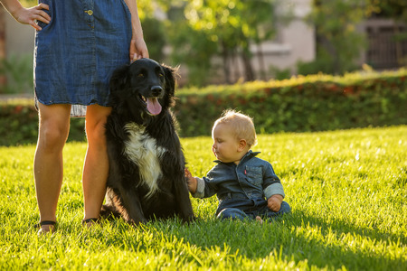 A mother with baby son and black dog in green neighborhood Stok Fotoğraf