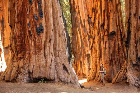 Familia con niño visita el parque nacional Sequoia en California, EE.