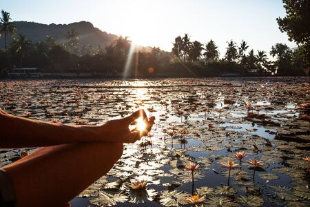 Woman practices yoga on a lake with lotus water lilies