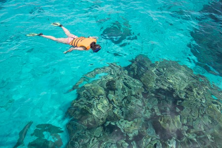 snorkling: Woman snorkling at Similan Island .Andaman sea thailand, Great for discover plenty of fishes and corals