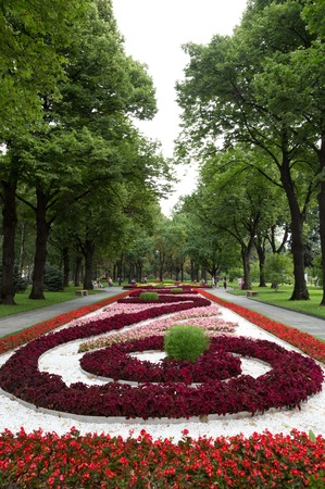 Footpath in a botanical gardenmoscowrussia Stock Photo