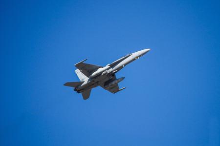 f18: Fighter Jet F-18 in flight