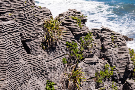 south island new zealand: Beautiful limestone cliffs in Paparoa National Park, South Island, New Zealand