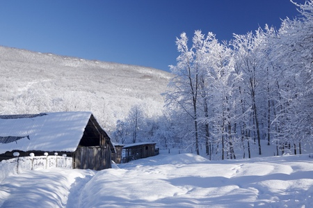 old barn in winter: Old house in snowy mountains. Bright sunny winter day in countryside.