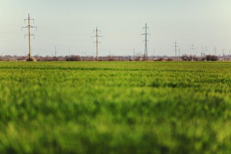 Hoogspanningslijnen en hoogspanningsmasten in een vlakke en groene agrarische landschap op een zonnige dag.