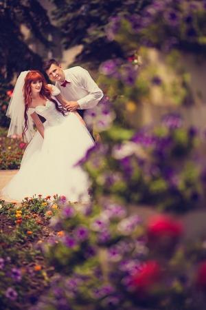Bruid en bruidegom knuffelen onder de struiken van rode rozen. Denk aan de rozenblaadjes op de hectische palmen. Boosheid op de schouders van de bruidegom. Pijnbomen, natuur, liefde, huwelijk.