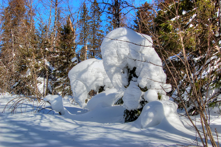 modelled: Guardians of the forest. Snow figures created by nature. Natural Park Taganay, South Urals, Russia. Stock Photo