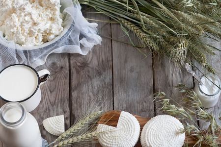 judaic: Tzfat cheese, milk, cottage cheese, wheat and oat grains on old wooden background. Concept of judaic holiday Shavuot.