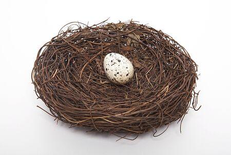 Quail eggs on the birdhouse. Фото со стока