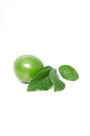 Beautiful green fresh plum on a white background. Organic fruit concepts.