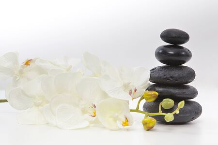 Flower and spa stones on white background. Decorative stones.