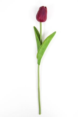 Artificial flowers. Colorful artificial tulips on a white background. Foto de archivo