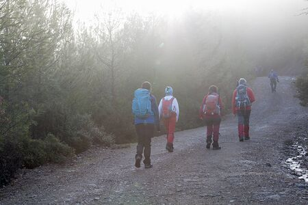 Nature walking group walking on footpath in autumn or winter concept for healthy lifestyle.