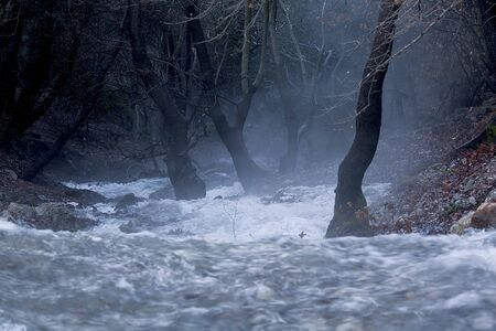 Rivers. Autumn or winter concept nature walks. Stock Photo