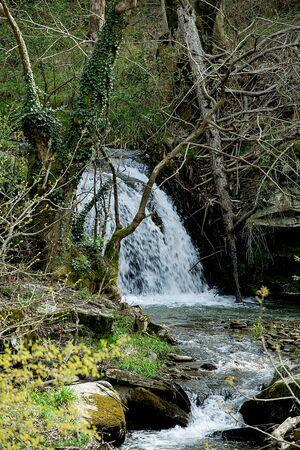 Rivers. Autumn or winter concept nature walks. Reklamní fotografie