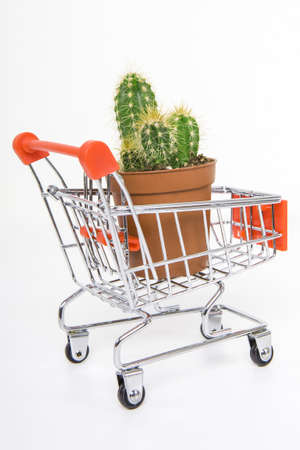 Small toy shopping cart on table. Internet shopping concept.