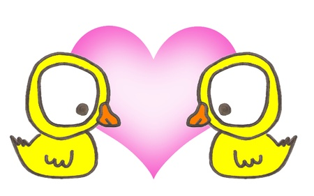 Two yellow duck in love on withe background photo