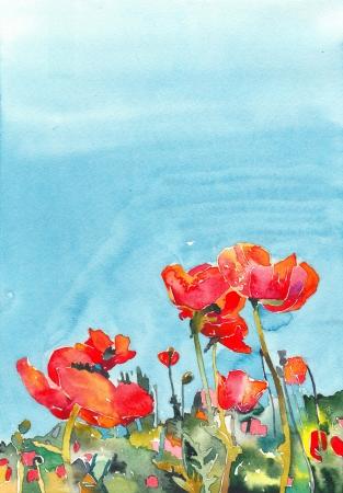 opium poppy: original watercolor poppy flower background   I am author of this illustration
