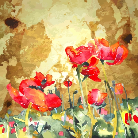 landscape painting: original watercolor poppy flower in gold background  Illustration