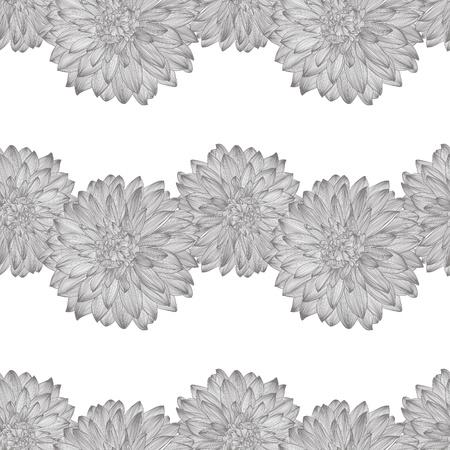 dalia: patrón transparente con el dibujo de la flor de la dalia. Elemento para el diseño de estilo de grabado,