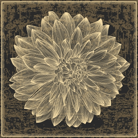 drawing of dahlia flower on grunge background. Element for your design, engraving style Иллюстрация