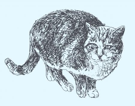digital sketch drawing of cat Stock Vector - 17418207